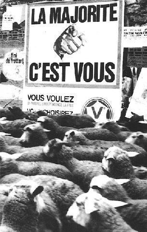moutons_majorite dans CHERCHEZ L'ERREUR